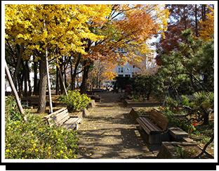 キャンパス中庭